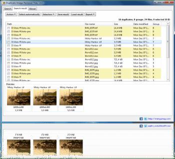 ManyProg Duplicate Image Remover