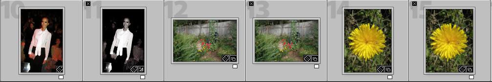 Lightroom Duplicates Collection
